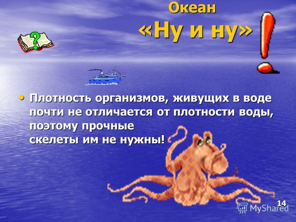 Океан «Ну и ну» Плотность организмов, живущих в воде почти не отличается от плотности воды, поэтому прочные скелеты им не нужны! Плотность организмов, живущих в воде почти не отличается от плотности воды, поэтому прочные скелеты им не нужны! 14