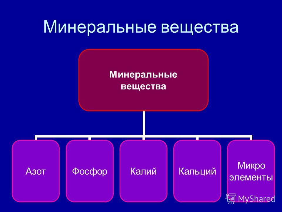 Минеральные вещества АзотФосфорКалийКальций Микро элементы