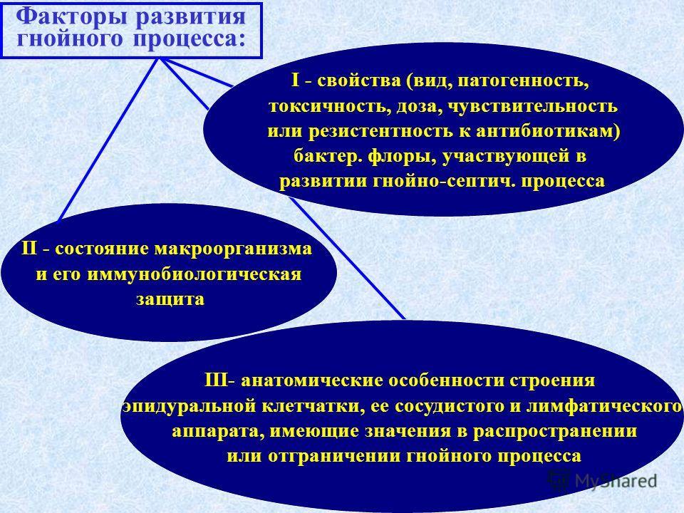 Факторы развития гнойного процесса: II - состояние макроорганизма и его иммунобиологическая защита I - свойства (вид, патогенность, токсичность, доза, чувствительность или резистентность к антибиотикам) бактер. флоры, участвующей в развитии гнойно-се