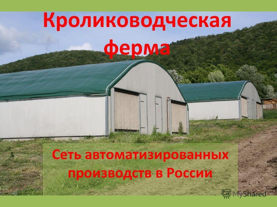 Кролиководческая ферма Сеть автоматизированных производств в России