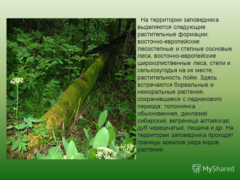 Растительный мир заповедника