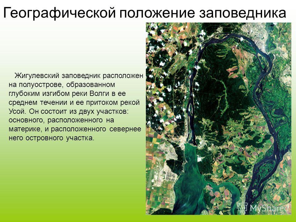 Жигулевский заповедник - один из самых старейших в системе заповедников России. Он впервые был организован в 1927 году 19 августа в виде участка Средневолжского заповедника. Просуществовав довольно значительное время, он был переименован в Куйбышевск