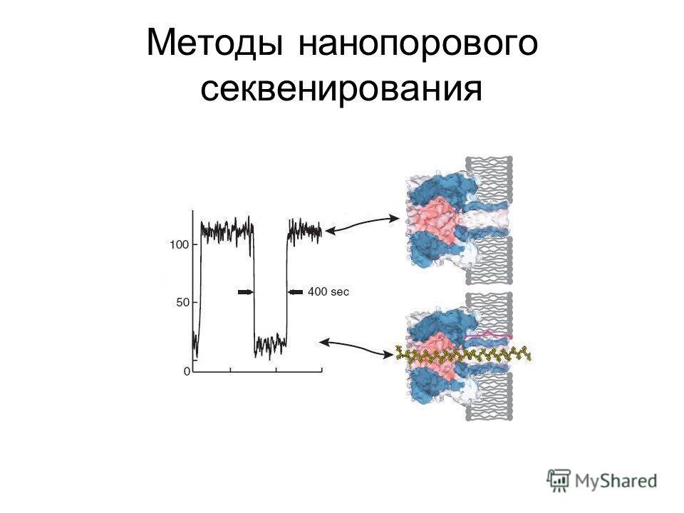 Методы нанопорового секвенирования