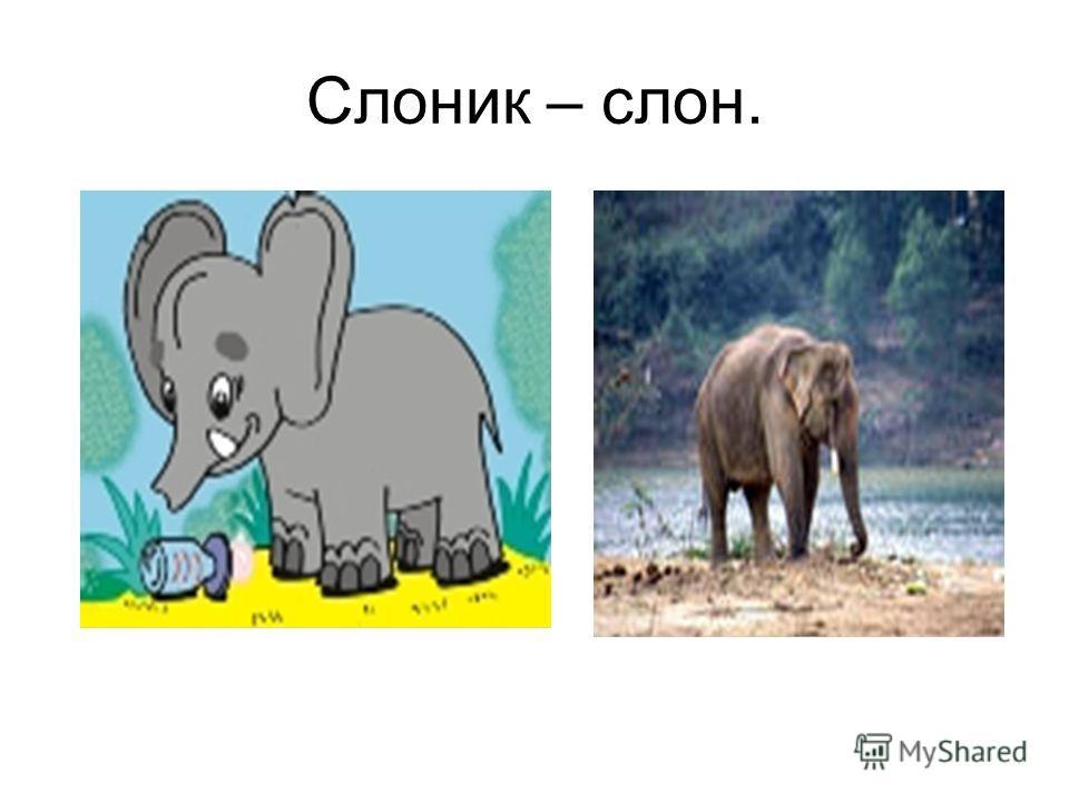 Слоник – слон.