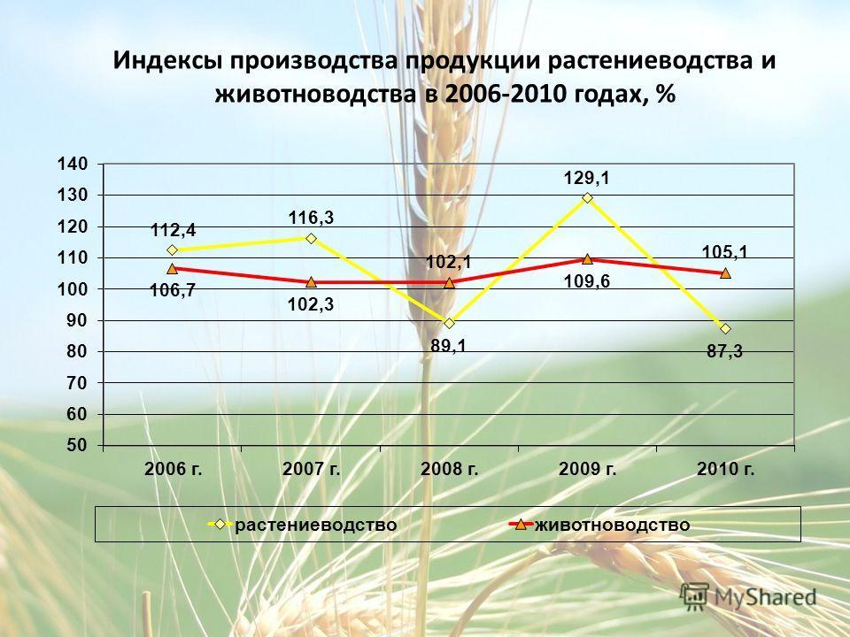 Индексы производства продукции растениеводства и животноводства в 2006-2010 годах, %