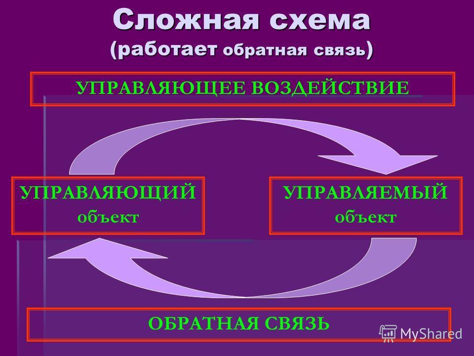 Сложная схема (работает обратная связь ) УПРАВЛЯЮЩИЙ объект УПРАВЛЯЕМЫЙ объект УПРАВЛЯЮЩЕЕ ВОЗДЕЙСТВИЕ ОБРАТНАЯ СВЯЗЬ