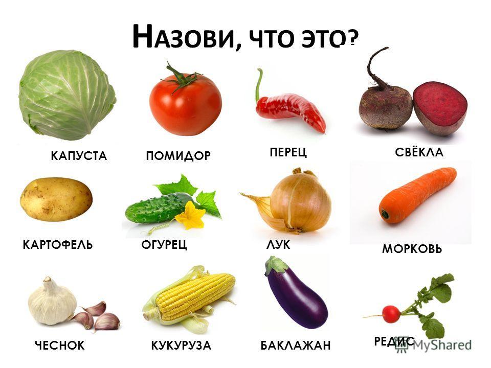 Картинки овощей для винегрета - e