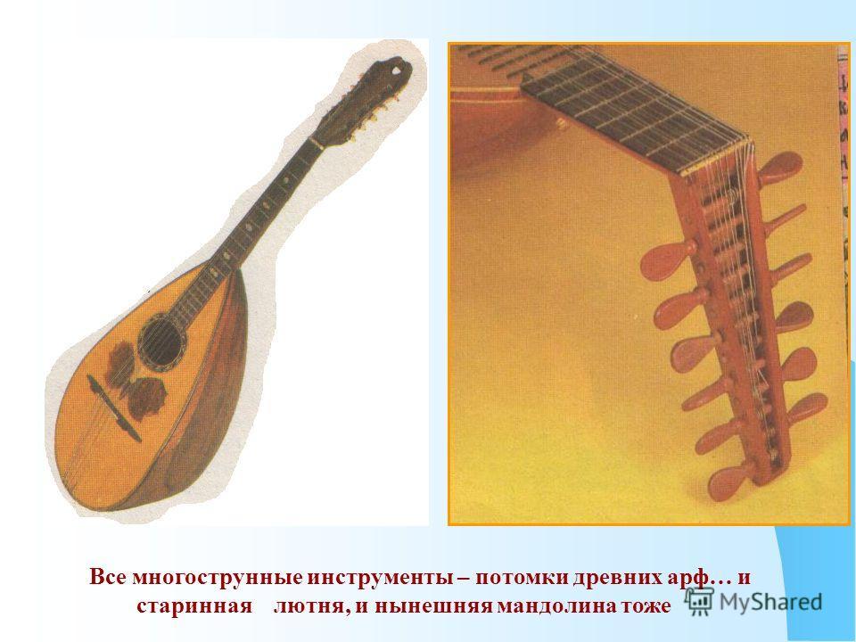 Все многострунные инструменты – потомки древних арф… и старинная лютня, и нынешняя мандолина тоже