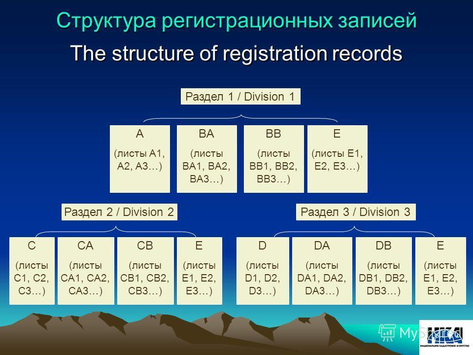Структура регистрационных записей The structure of registration records E (листы E1, E2, E3…) DB (листы DB1, DB2, DB3…) DA (листы DA1, DA2, DA3…) CB (листы CB1, CB2, CB3…) CA (листы CA1, CA2, CA3…) C (листы C1, C2, C3…) E (листы E1, E2, E3…) BB (лист