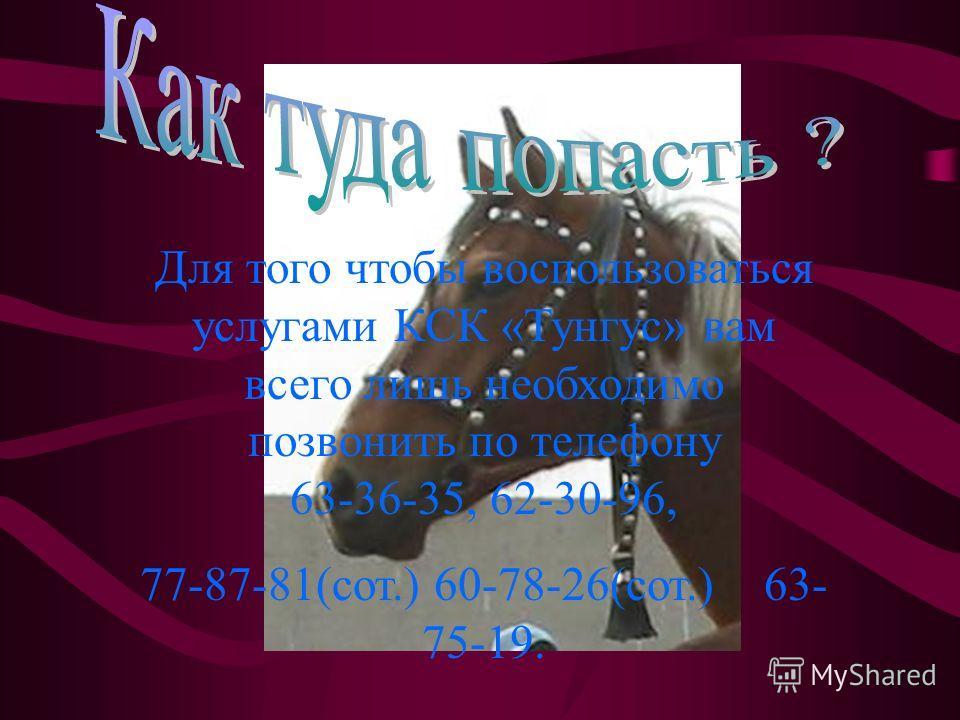 Для того чтобы воспользоваться услугами КСК «Тунгус» вам всего лишь необходимо позвонить по телефону 63-36-35, 62-30-96, 77-87-81(сот.) 60-78-26(сот.) 63- 75-19.