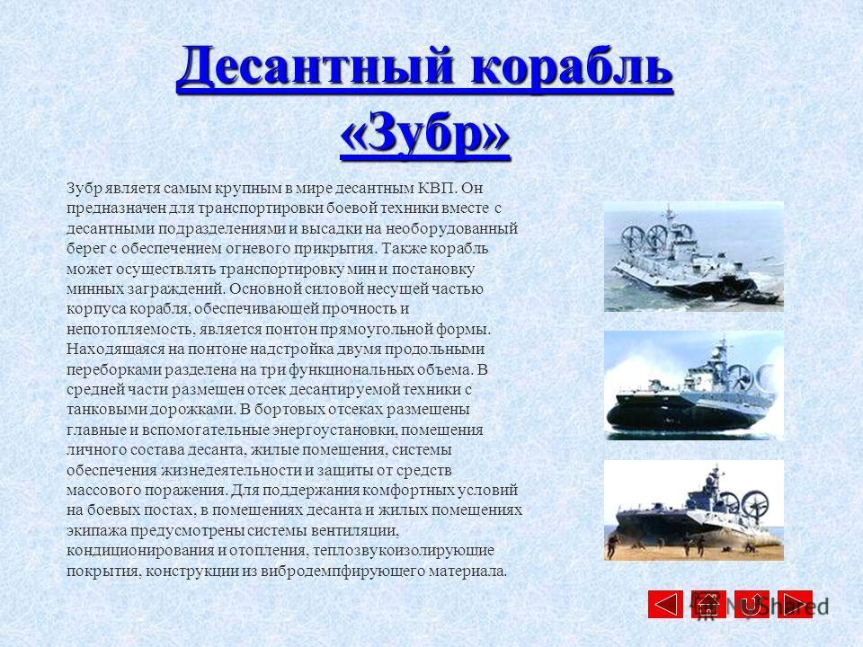 Корабль оборудован системой противолодочной обороны Удав-1 с 60 противолодочными ракетами. Удав-1 защищает надводные корабли, отвлекая и уничтожая торпеды противника. Система имеет 10 секций и способна вести огонь глубинными реактивными снарядами 111