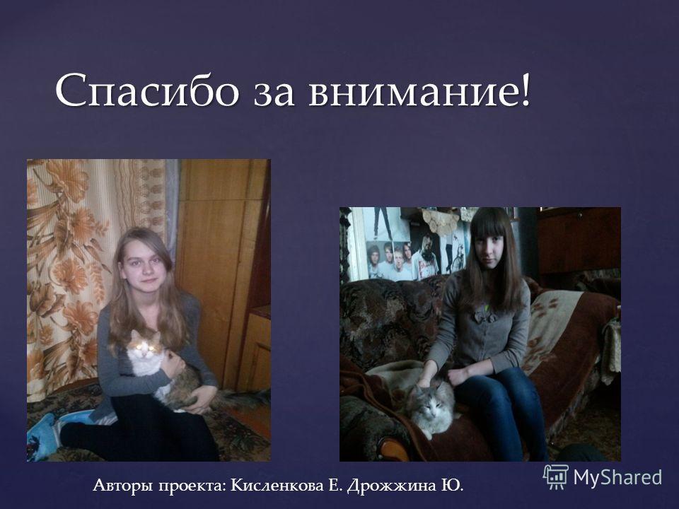 Спасибо за внимание! Авторы проекта: Кисленкова Е. Дрожжина Ю.