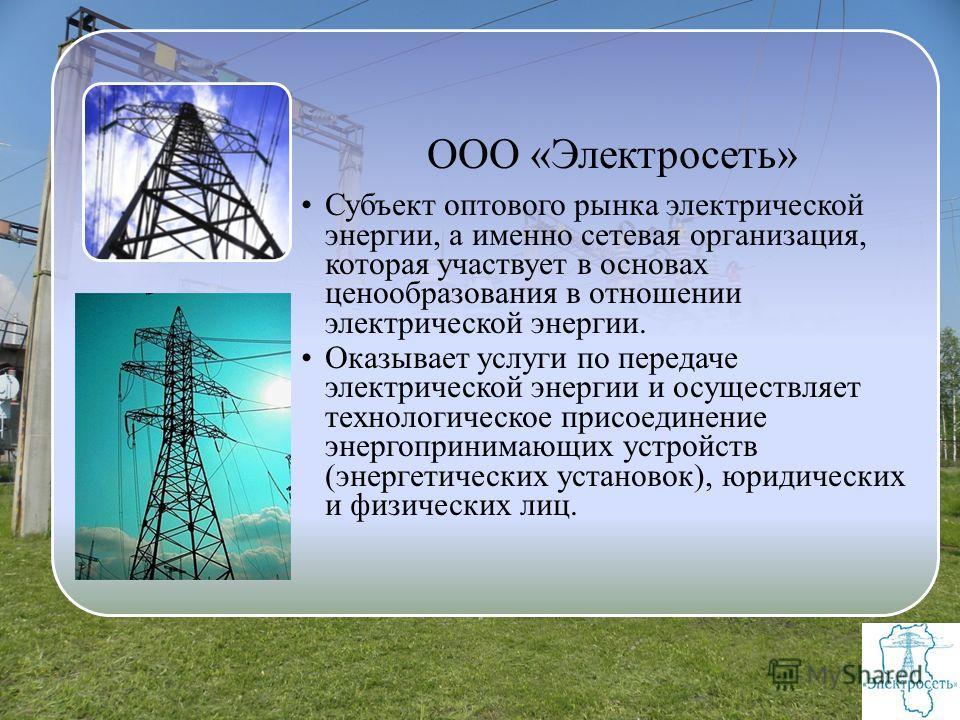 ООО «Электросеть» Субъект оптового рынка электрической энергии, а именно сетевая организация, которая участвует в основах ценообразования в отношении электрической энергии. Оказывает услуги по передаче электрической энергии и осуществляет технологиче