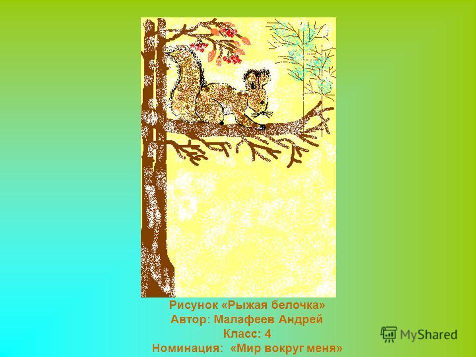 Рисунок «Рыжая белочка» Автор: Малафеев Андрей Класс: 4 Номинация: «Мир вокруг меня»
