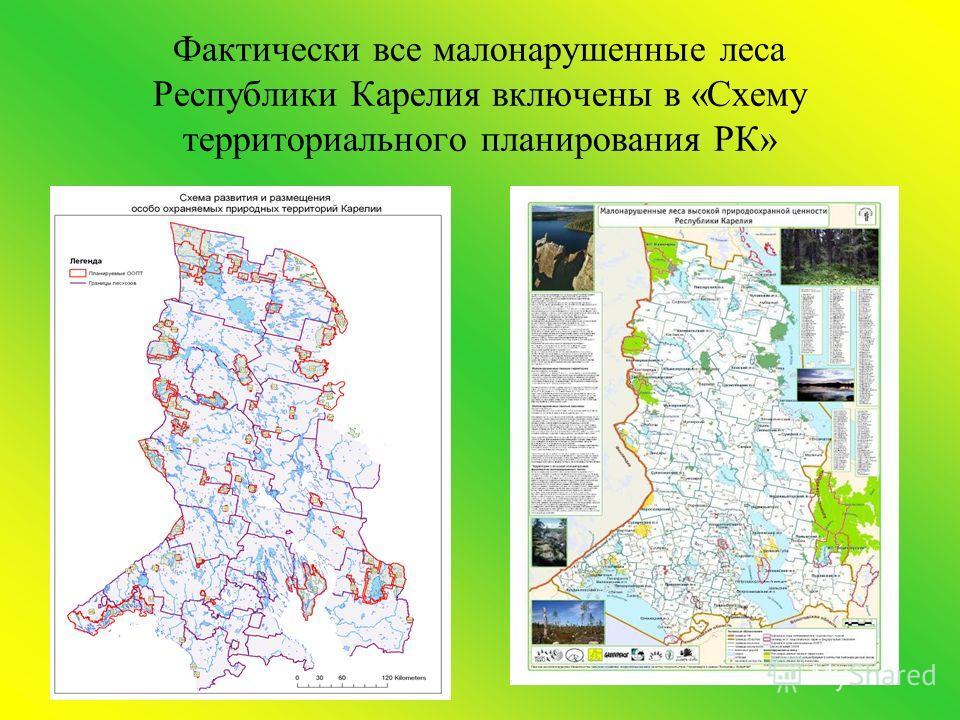Фактически все малонарушенные леса Республики Карелия включены в «Схему территориального планирования РК»