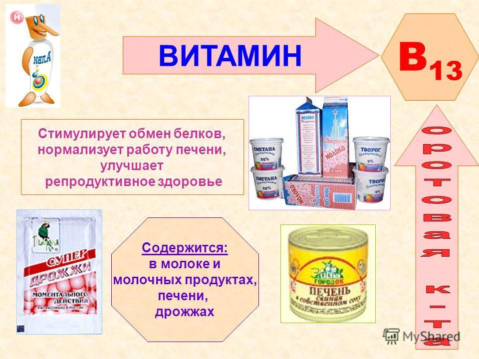 ВИТАМИН B 13 Стимулирует обмен белков, нормализует работу печени, улучшает репродуктивное здоровье Содержится: в молоке и молочных продуктах, печени, дрожжах
