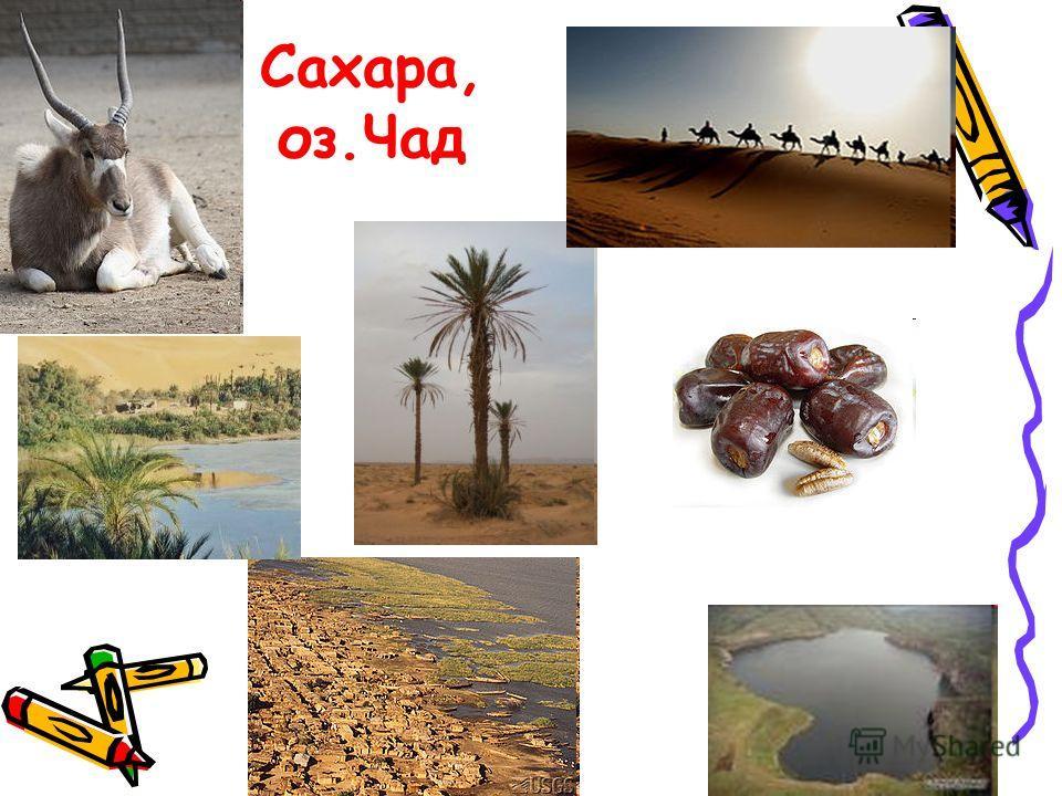 Сахара, оз.Чад