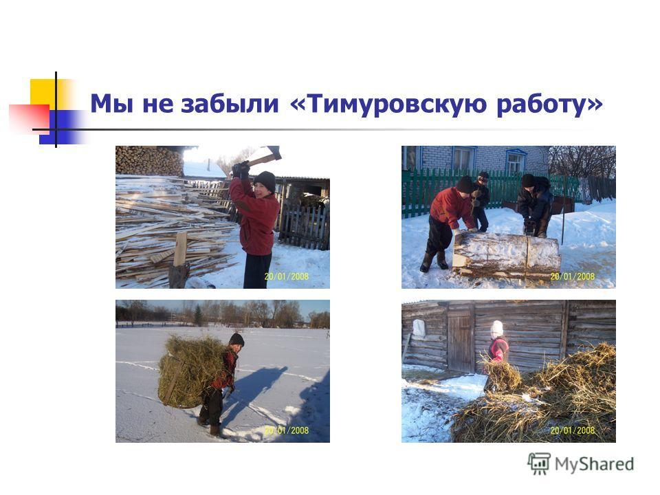 Мы не забыли «Тимуровскую работу»