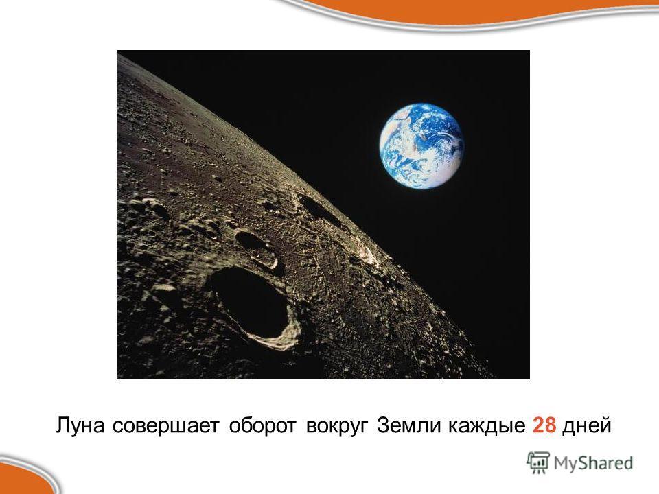 Луна совершает оборот вокруг Земли каждые 28 дней