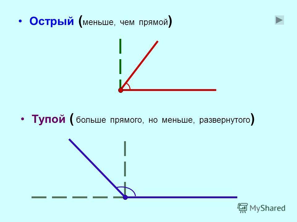 Виды углов: Развернутый ( образован дополнительными лучами ) Прямой ( равен половине развернутого )