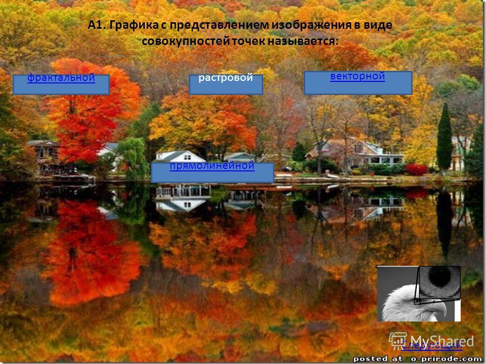 А1. Графика с представлением изображения в виде совокупностей точек называется: фрактальной прямолинейной растровой векторной Следующий