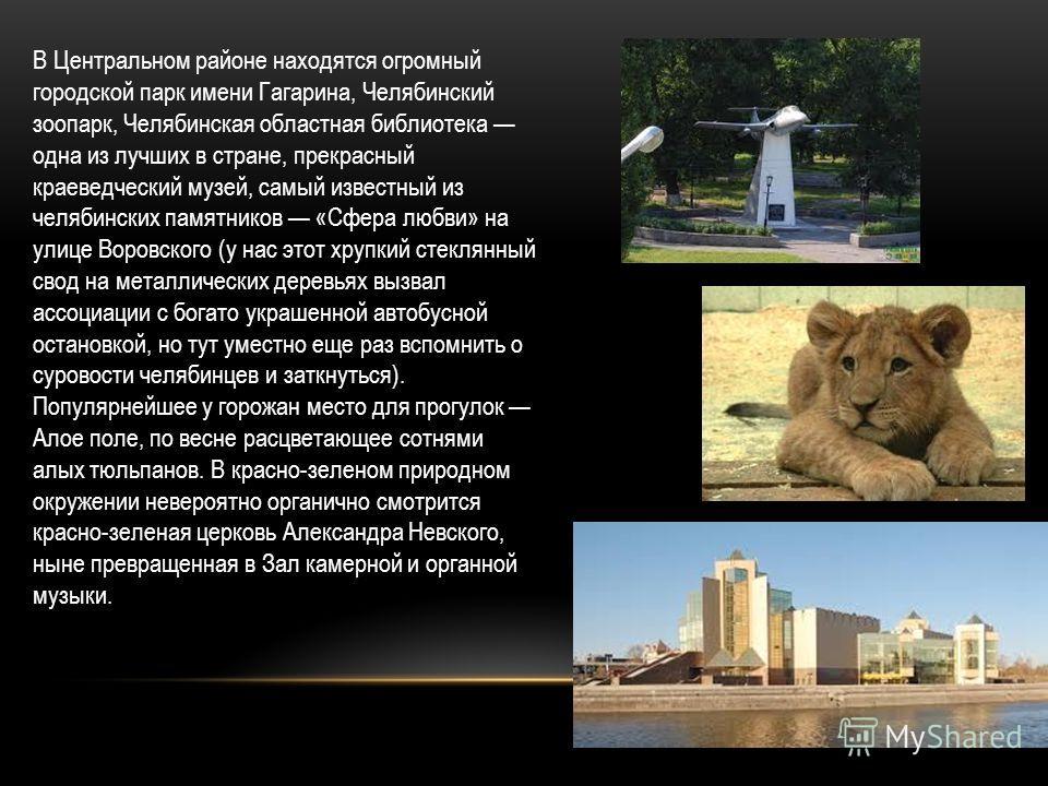 В Центральном районе находятся огромный городской парк имени Гагарина, Челябинский зоопарк, Челябинская областная библиотека одна из лучших в стране, прекрасный краеведческий музей, самый известный из челябинских памятников «Сфера любви» на улице Вор
