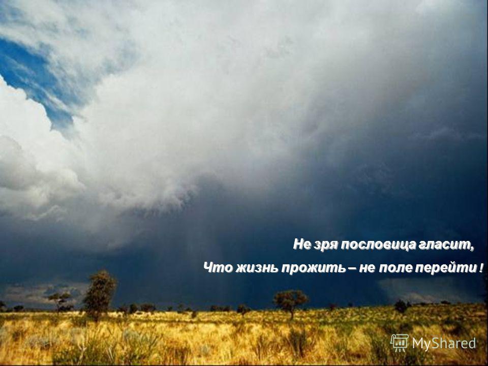 Не зря пословица гласит, Что жизнь прожить – не поле перейти !