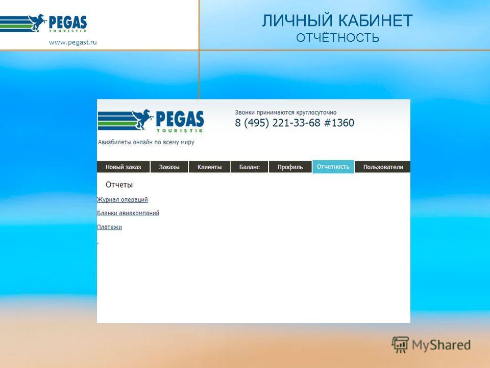 ЛИЧНЫЙ КАБИНЕТ ОТЧЁТНОСТЬ www.pegast.ru