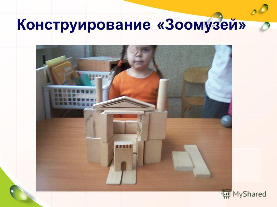 Конструирование «Зоомузей»