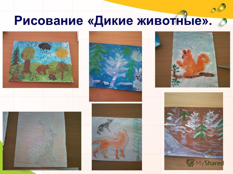 Рисование «Дикие животные».