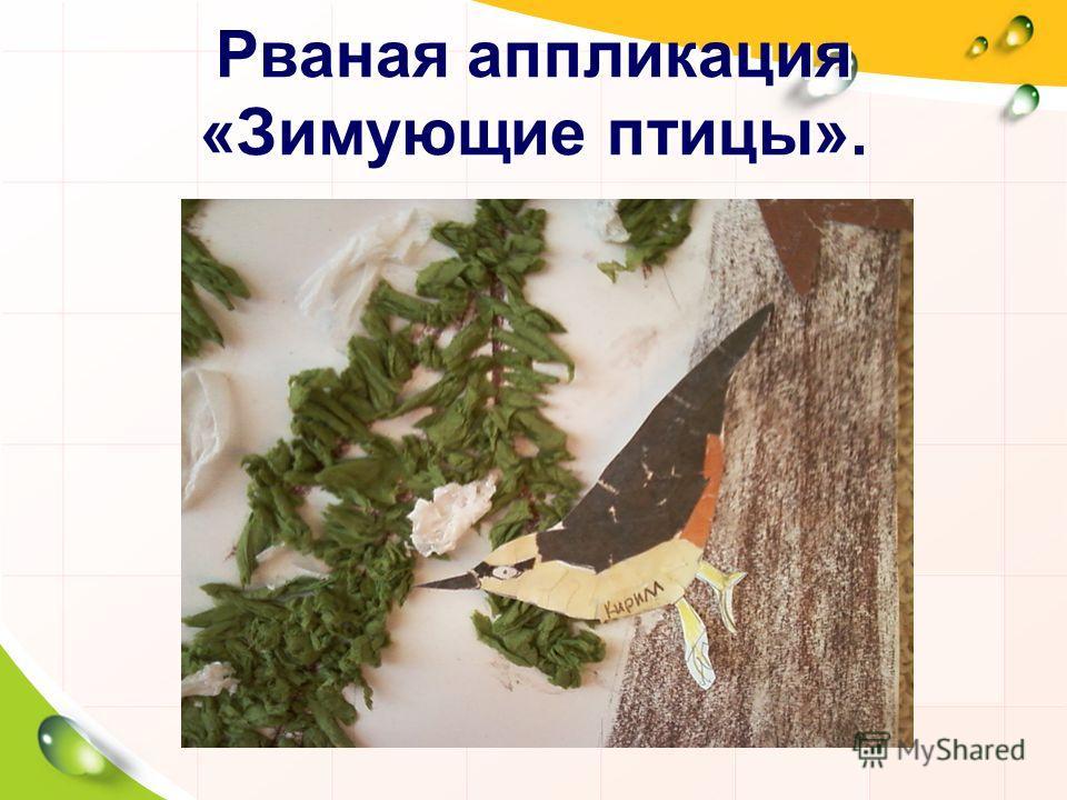 Рваная аппликация «Зимующие птицы».