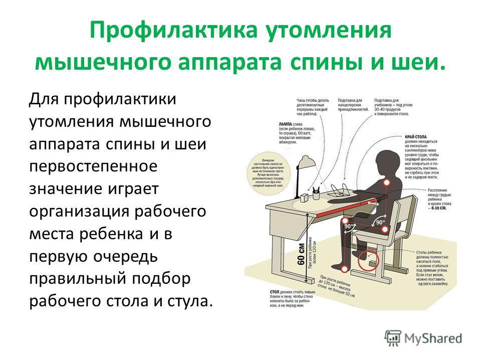Профилактика утомления мышечного аппарата спины и шеи. Для профилактики утомления мышечного аппарата спины и шеи первостепенное значение играет организация рабочего места ребенка и в первую очередь правильный подбор рабочего стола и стула.
