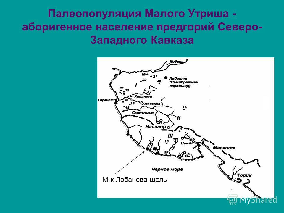 Палеопопуляция Малого Утриша - аборигенное население предгорий Северо- Западного Кавказа М-к Лобанова щель