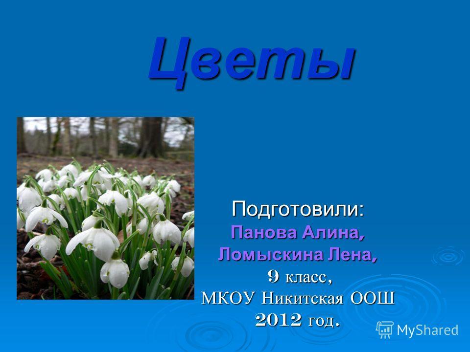 Цветы Подготовили: Панова Алина, Ломыскина Лена, 9 класс, 9 класс, МКОУ Никитская ООШ 2012 год.