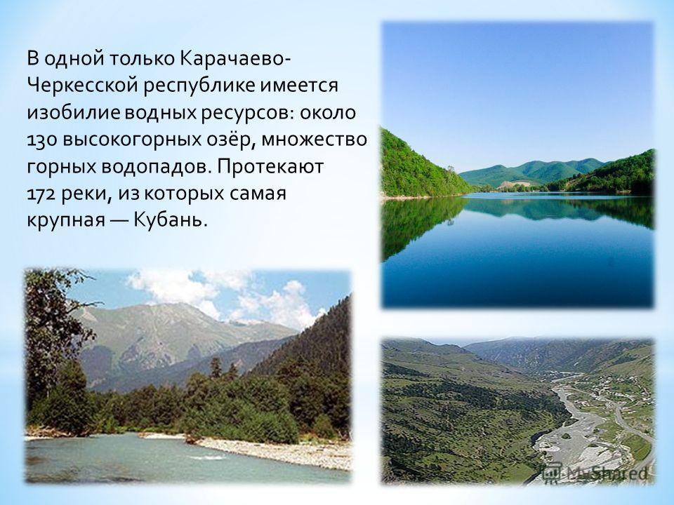 Флора и фауна Кавказа славилась всегда. Кавказ богат различными видами животных, растений. Здесь находится огромное количество рек, озер и водопадов.