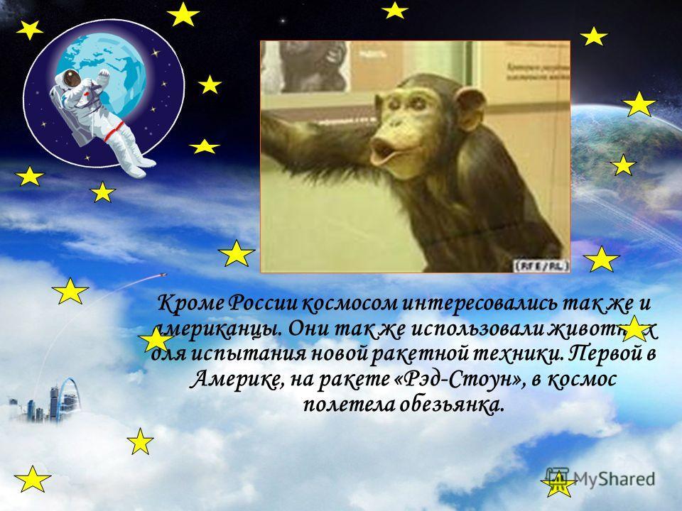 Кроме России космосом интересовались так же и американцы. Они так же использовали животных для испытания новой ракетной техники. Первой в Америке, на ракете «Рэд-Стоун», в космос полетела обезьянка.
