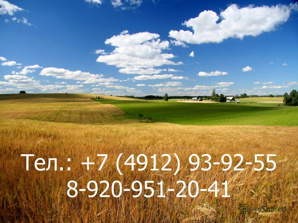 Тел.: +7 (4912) 93-92-55 8-920-951-20-41