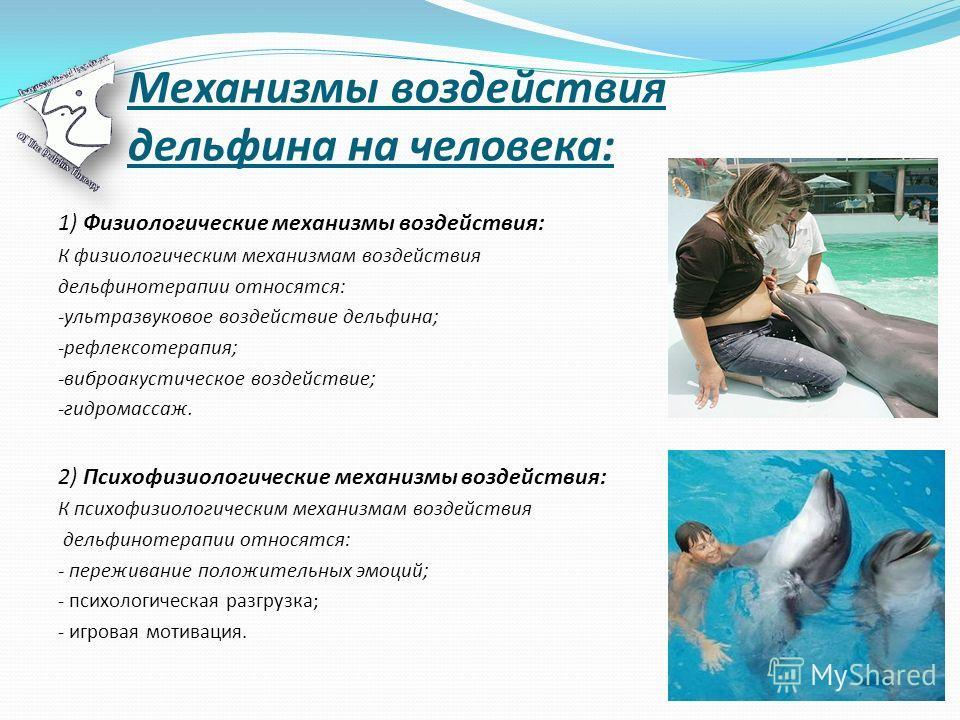 Механизмы воздействия дельфина на человека: 1) Физиологические механизмы воздействия: К физиологическим механизмам воздействия дельфинотерапии относятся: -ультразвуковое воздействие дельфина; -рефлексотерапия; -виброакустическое воздействие; -гидрома