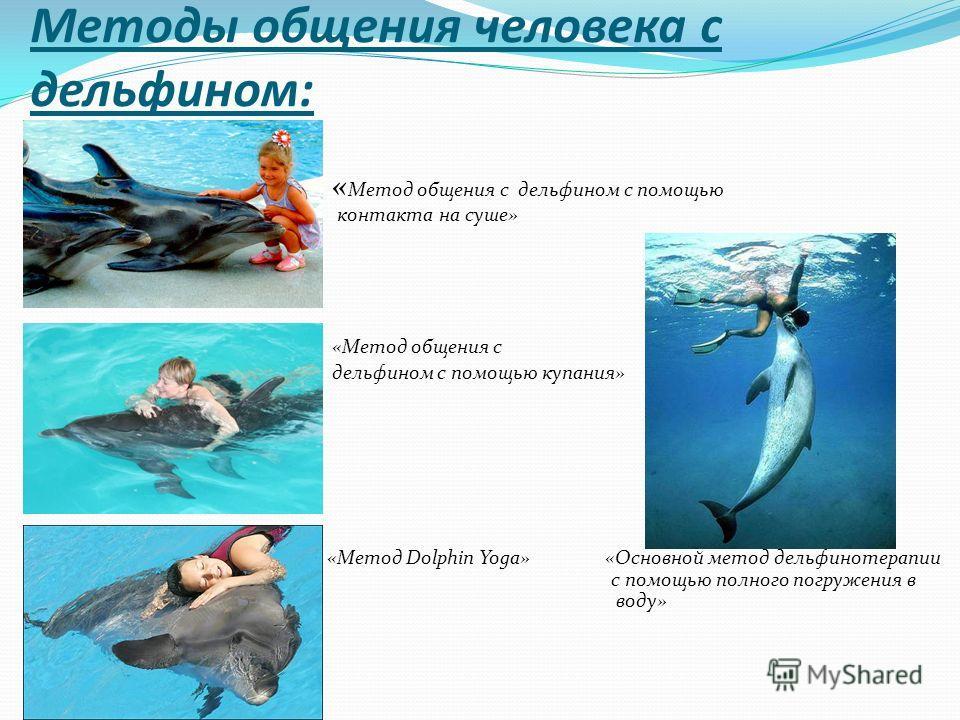 Методы общения человека с дельфином: « Метод общения с дельфином с помощью контакта на суше» «Метод общения с дельфином с помощью купания» «Метод Dolphin Yoga» «Основной метод дельфинотерапии с по с помощью полного погружения в воду» воду»