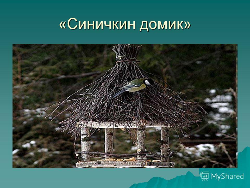 «Синичкин домик»