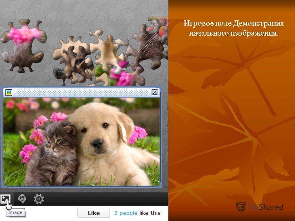 Игровое поле Демонстрация начального изображения.