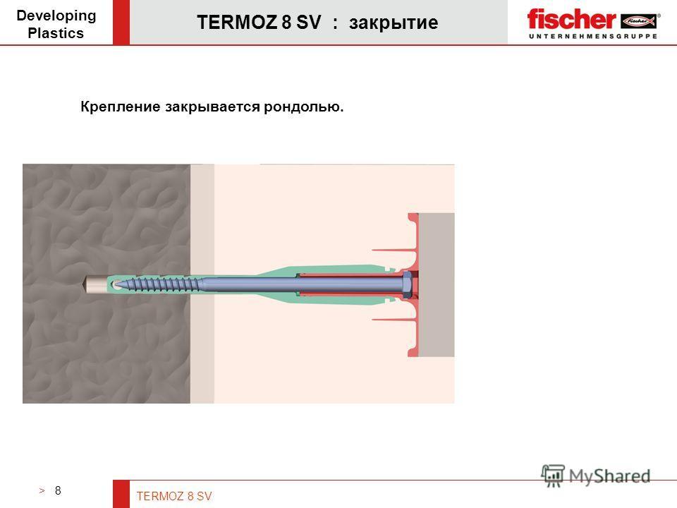 > 8 TERMOZ 8 SV TERMOZ 8 SV : закрытие Developing Plastics Крепление закрывается рондолью.
