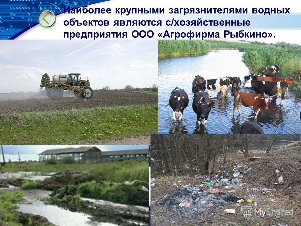 LOGO Наиболее крупными загрязнителями водных объектов являются с/хозяйственные предприятия ООО «Агрофирма Рыбкино».