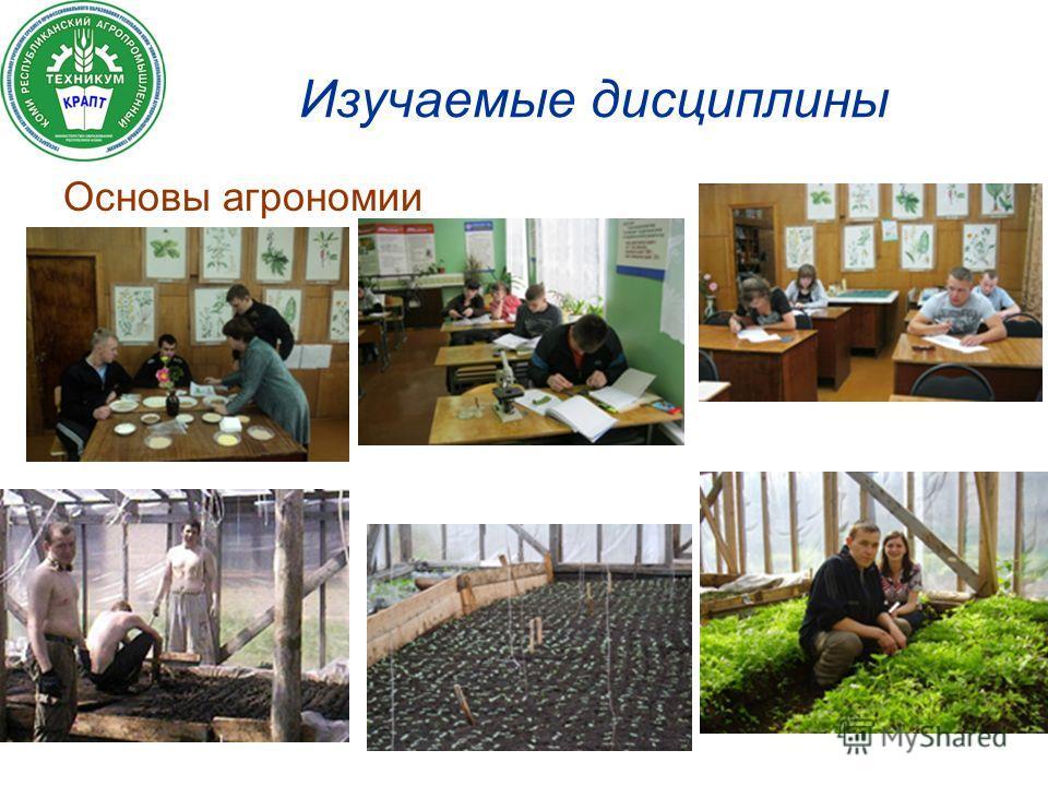 Изучаемые дисциплины Основы агрономии