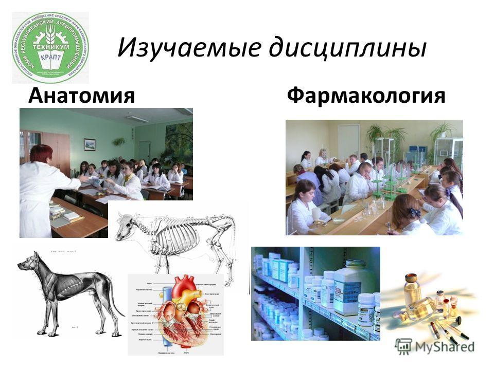 Изучаемые дисциплины АнатомияФармакология