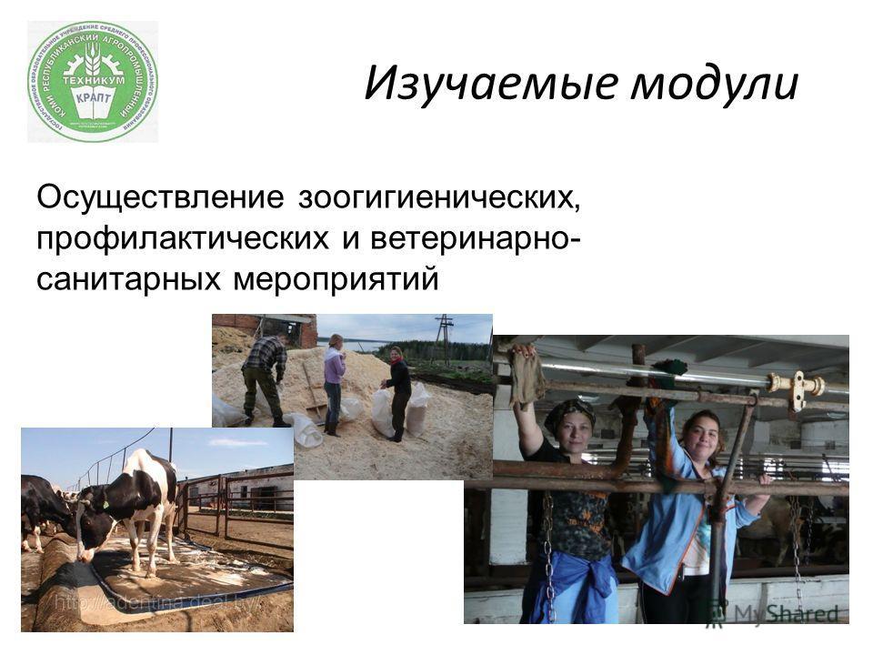 Изучаемые модули Осуществление зоогигиенических, профилактических и ветеринарно- санитарных мероприятий