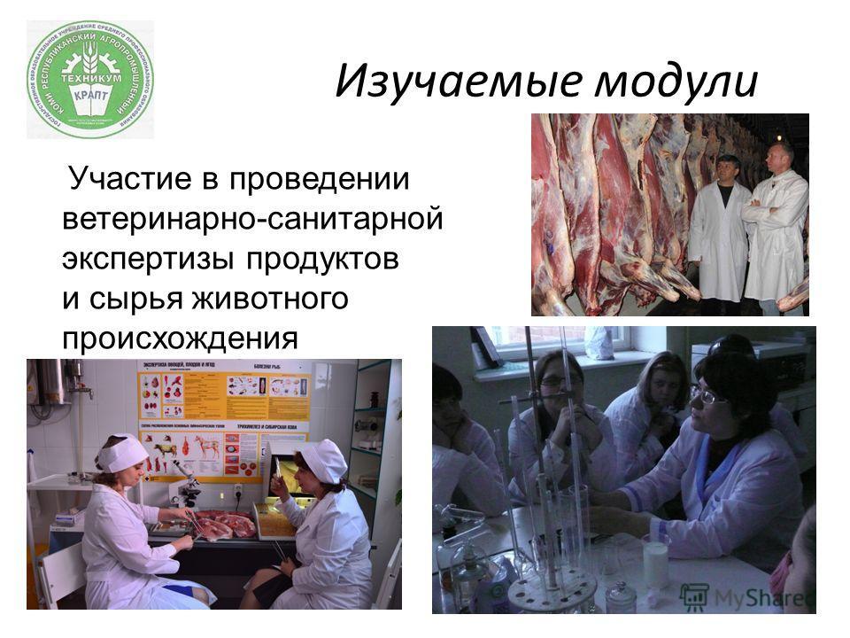 Изучаемые модули Участие в проведении ветеринарно-санитарной экспертизы продуктов и сырья животного происхождения