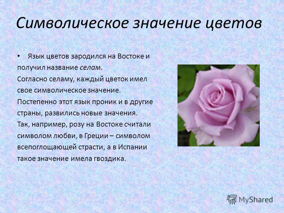 Символическое значение цветов Язык цветов зародился на Востоке и получил название селам. Согласно селаму, каждый цветок имел свое символическое значение. Постепенно этот язык проник и в другие страны, развились новые значения. Так, например, розу на