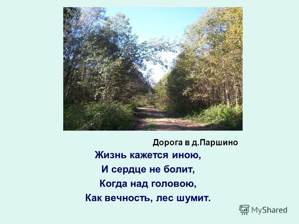 Дорога в д.Паршино Жизнь кажется иною, И сердце не болит, Когда над головою, Как вечность, лес шумит.