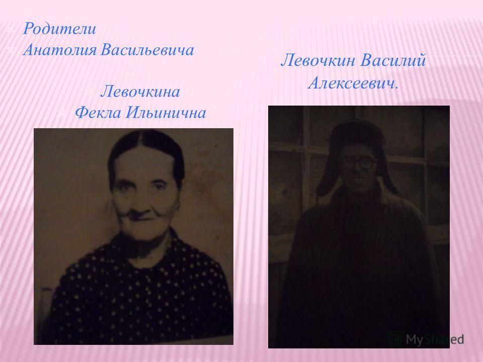 Родители Анатолия Васильевича Левочкина Фекла Ильинична Левочкин Василий Алексеевич.
